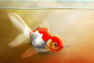 Digital Art - Red Cap Goldfish by John Wills