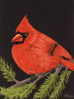 Painting - Red Cardinal by Anastasiya Malakhova