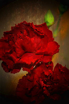 Photograph - Red Carnations  by Susan  McMenamin