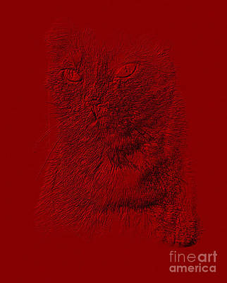 Photograph - Red Cat Collection. Special... by Oksana Semenchenko