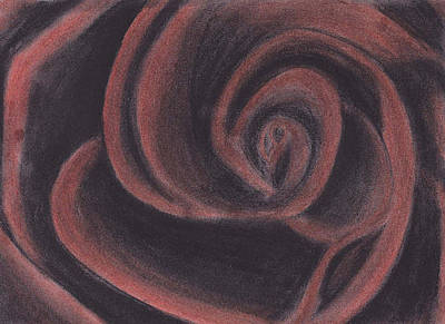 Rose Drawing - Red Charcoal Rose by Rebecca Schoof