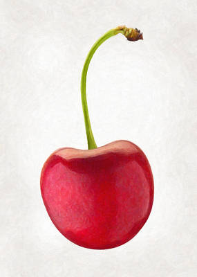 Studio Shot Painting - Red Cherry  by Danny Smythe