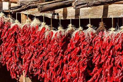 Photograph - Red Chili Ristras by Ben Graham