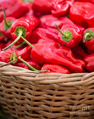 Photograph - Red Chilis In Basket by Rebecca Cozart