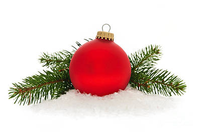 Pine Needles Photograph - Red Christmas Bauble by Elena Elisseeva