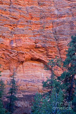 Photograph - Red Cliff Arch by Fred Stearns