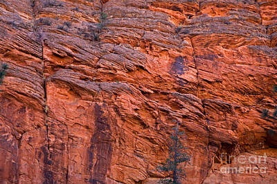 Photograph - Red Cliff by Fred Stearns