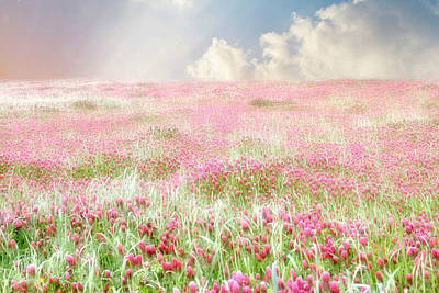 Fields Of Flowers Photograph - A Perfect World by Amy Tyler