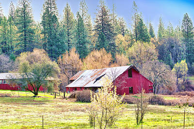 Photograph - Red Country Barn by William Havle
