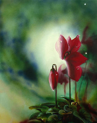 Painting - Red Cyclamen by Lynette Yencho