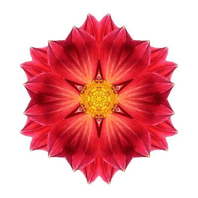 Photograph - Red Dahlia Hybrid IIi Flower Mandala White by David J Bookbinder