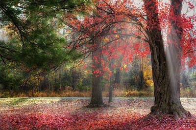Autumn In New England Photograph - Red Dawn by Bill Wakeley