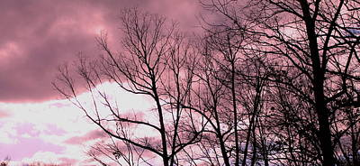 Print featuring the photograph Red Dawn by Candice Trimble