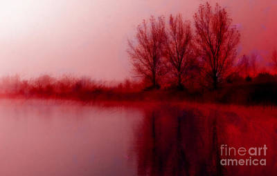 Photograph - Red Dawn by Julie Lueders
