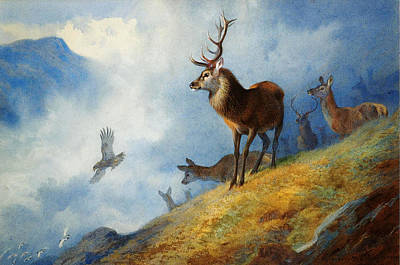 Beautiful Scenery Painting - Red Deer Watching A Golden Eagle Hunt by Archibald Thorburn