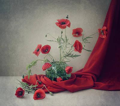 Poppy Wall Art - Photograph - Red by Dimitar Lazarov -
