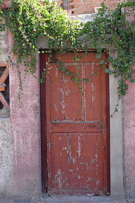 Photograph - Red Door 2 by Lew Davis