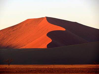 Photograph - Red Dune by Ramona Johnston