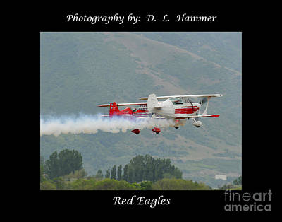 Red Eagles Art Print by Dennis Hammer
