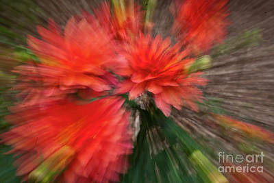 Abstrac Photograph - Red Explosion by Heiko Koehrer-Wagner