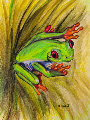 Red Eyed Frog Art Print by Zina Stromberg