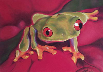 Red-eyed Tree Frog On Red Foliage Art Print