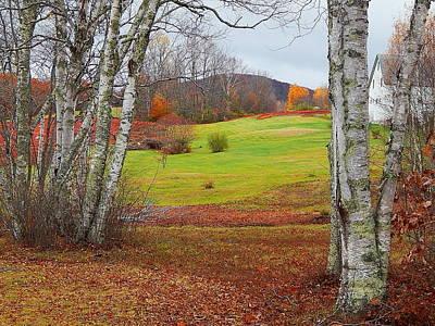 Photograph - Red Field  by Expressionistart studio Priscilla Batzell