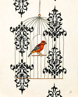 Red Finch Art Print by Stefanie Forck