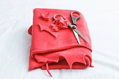 Red Fleece Art Print by Tom Gowanlock