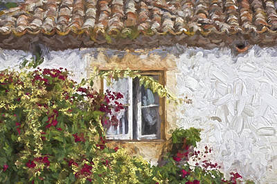 Photograph - Red Flower Window II by David Letts