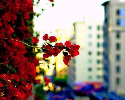 Red Flowers Downtown Art Print by Matt Harang