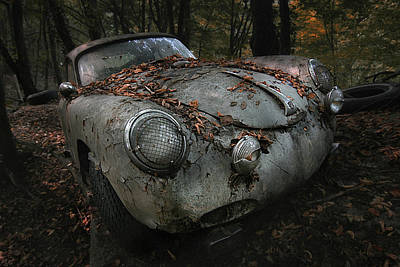 Rusty Cars Wall Art - Photograph - Red Forest by Holger Droste