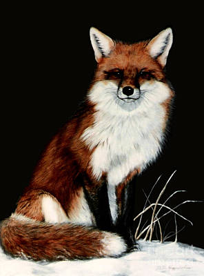 Red Fox Art Print by DiDi Higginbotham