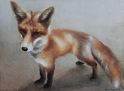 Fox Kit Painting - Red Fox by Ezartesa