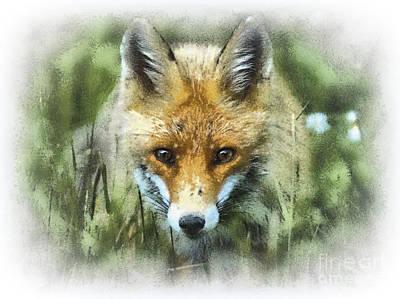 Vulpes Digital Art - Red Fox Portrait by Czesznak Zsolt