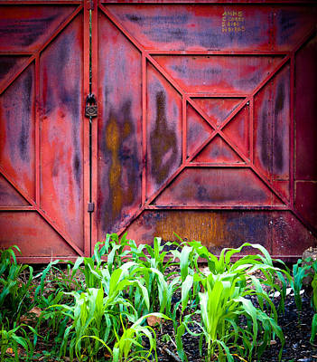 Photograph - Red Gate Green Corn by Ronda Broatch