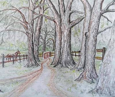 Country Lanes Drawing - Red Gate by Joan Mace