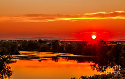 Photograph - Red Glow by Robert Bales