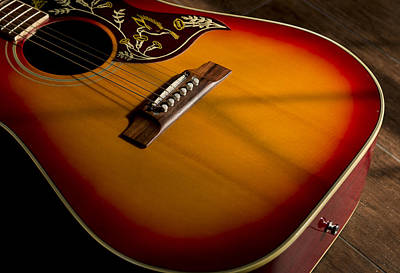 Guitar Photograph - Red Guitar In Shadow by Mark McKinney