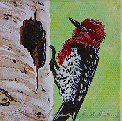 Painting - Red Headed Sapsucker Mini by Jennifer Lake