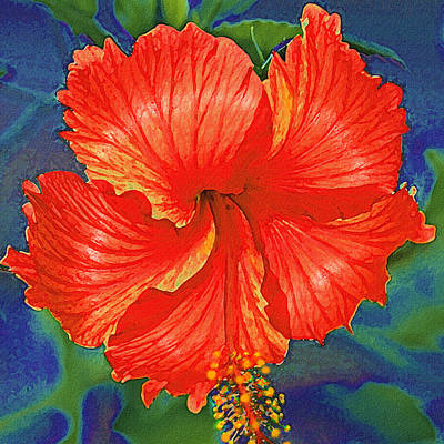 Digital Art - Red Hibiscus Flower by Jane Schnetlage