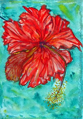 Red Hibiscus Flower Art Print by Kelly     ZumBerge