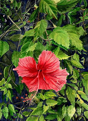Painting - Red Hibiscus  by Melly Terpening