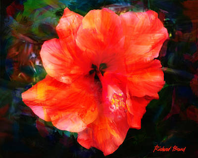 Digital Art - Red Hibiscus by Richard Beard
