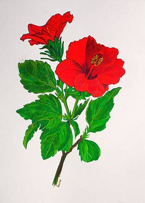 Painting - Red Hibiscus by Tracey Harrington-Simpson