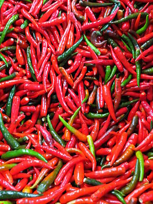 Photograph - Red Hot Chili Peppers by Ramona Johnston