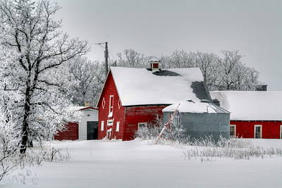 Print featuring the photograph Red In White by Larry Trupp