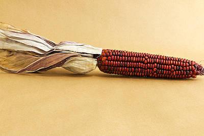 Kitchen Photograph - Red Indian Corn by Mark McKinney