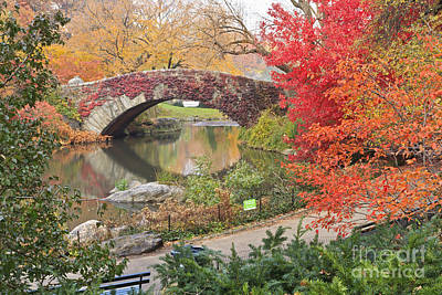 Typographic World Royalty Free Images - Red Ivy on Central Park Bridge Royalty-Free Image by Colin D Young