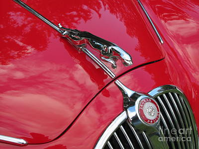Photograph - Red Jaguar 3.8 by Neil Zimmerman